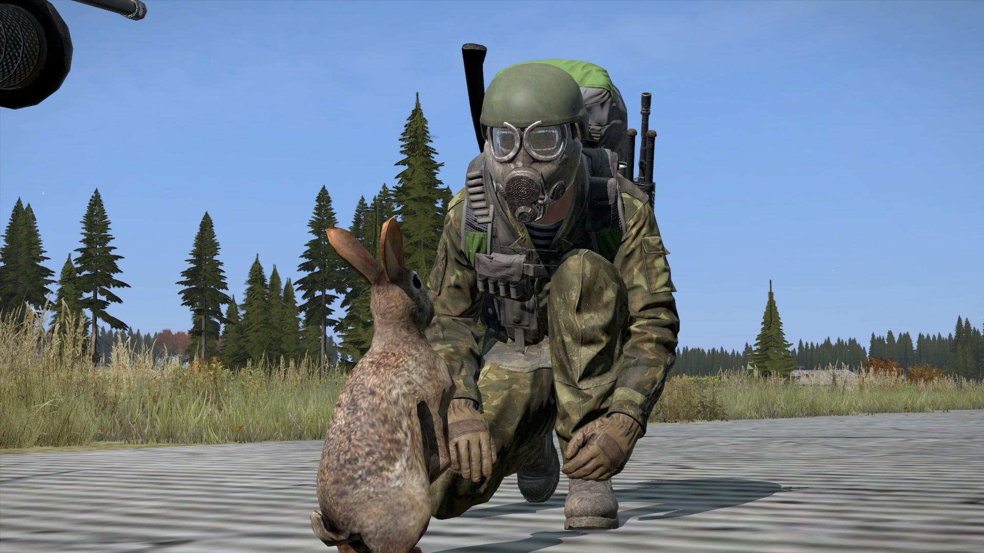 DayZ Standalone - Überlebender trifft Hasen