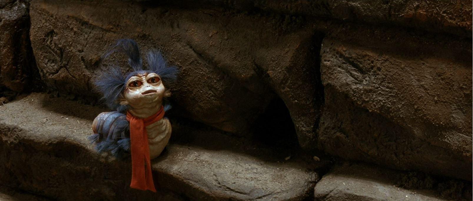 Die Reise ins Labyrinth - Eine Raupe