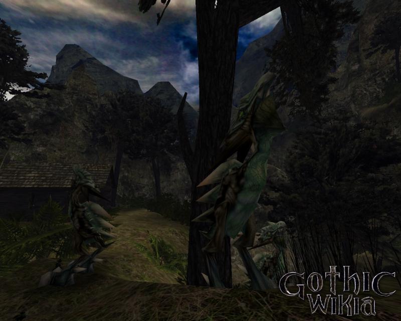 Gothic 2 Grasland Scavenger