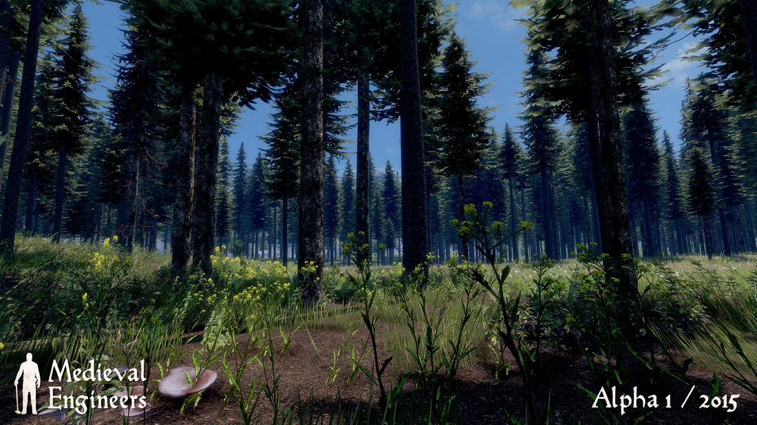 Medieval Engineers - Ein schöner Wald