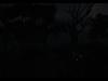 Morrowind Overhaul 002