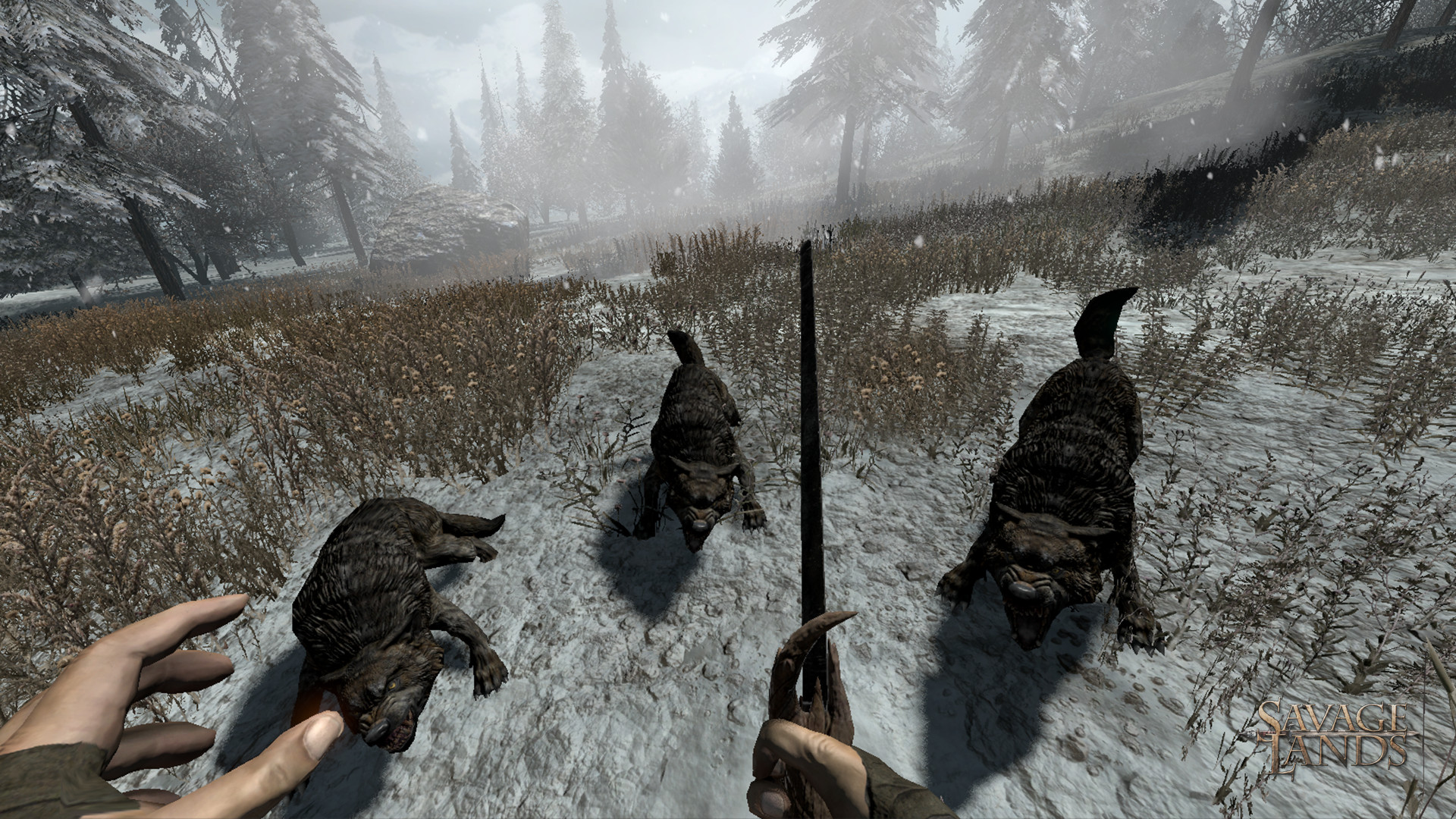 Savage Lands - Kampf gegen Wölfe.jpg