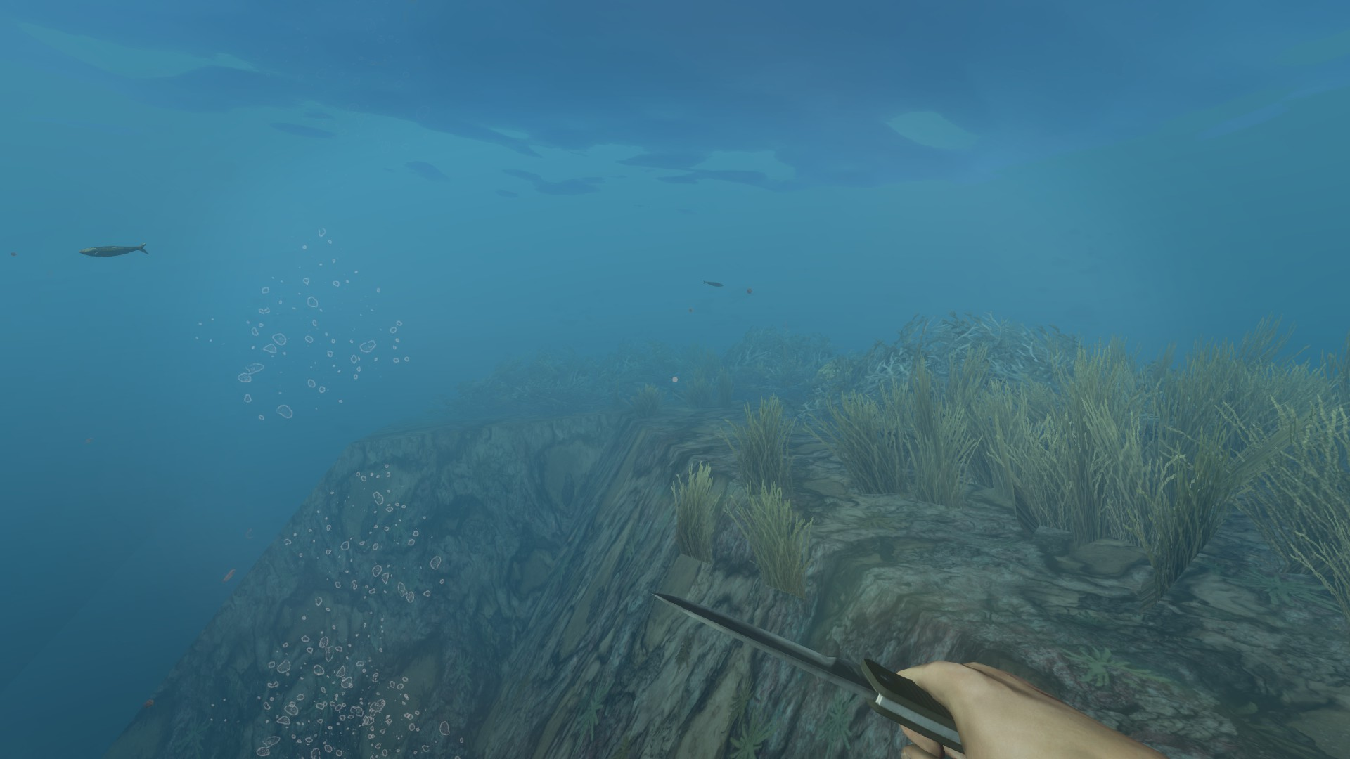 Stranded Deep - Unter Wasser.jpg