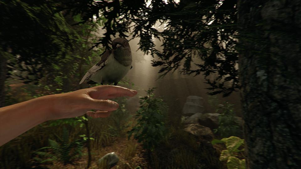 """Résultat de recherche d'images pour """"the forest game screenshot 2018"""""""